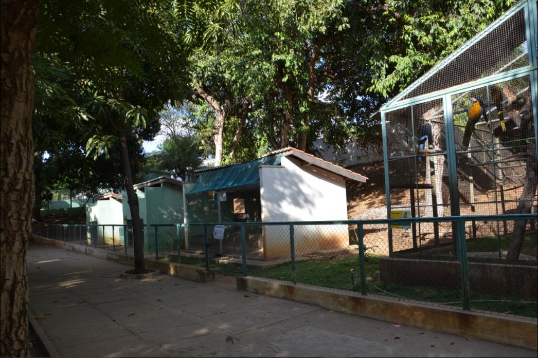 Área de acesso para vários recintos de espécies de aves
