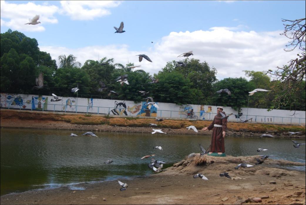 Lago do Zoológico que abriga várias espécies de aves