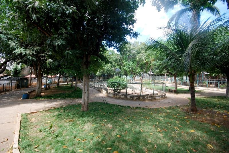 Área ampla que dá acesso aos vários recintos de animais